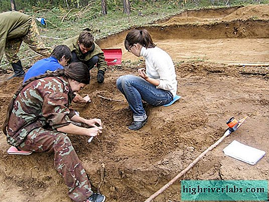550 million years old animal remains found in Yakutia