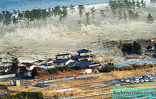2004 Tsunami in Thailand and Indonesia