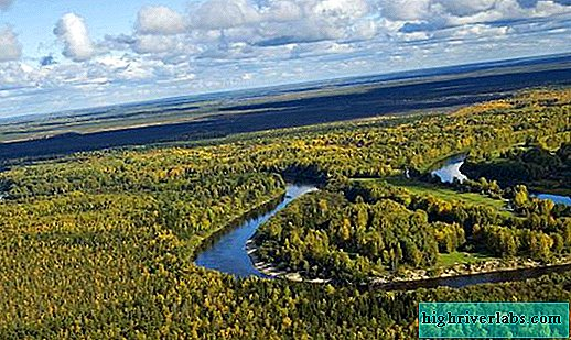 Ecological problems of the West Siberian Plain